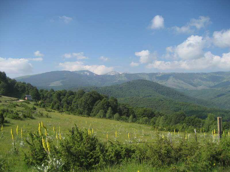 Планинарска забава на Бегово поле 5
