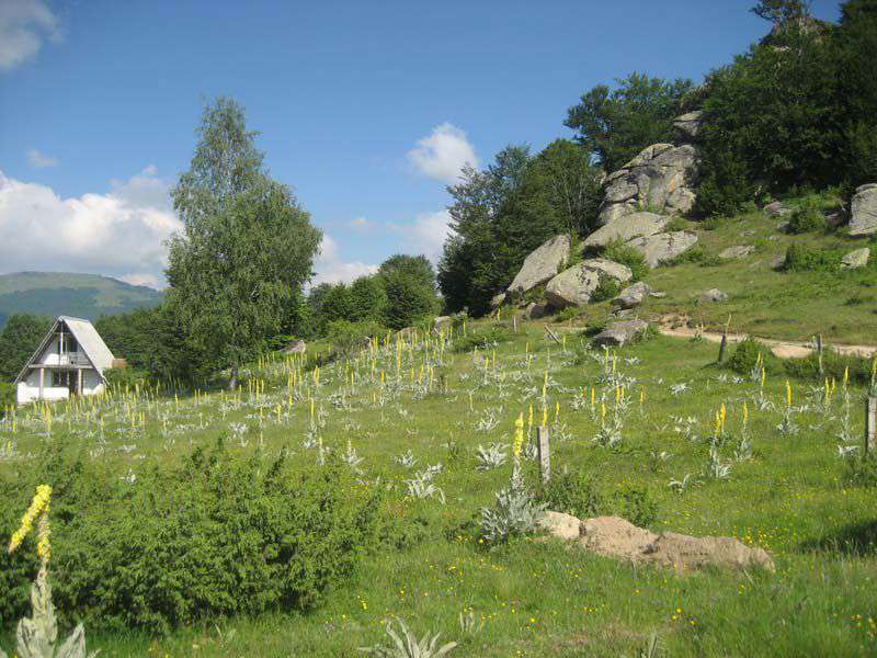 Планинарска забава на Бегово поле 6