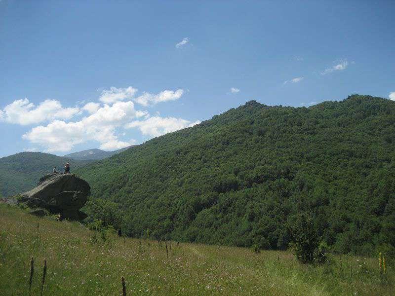 Планинарска забава на Бегово поле 40
