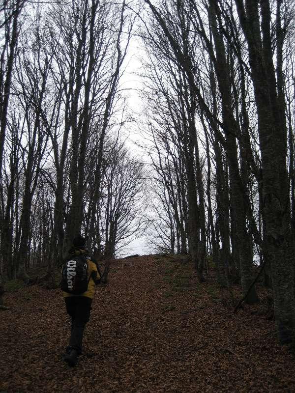 Есен на Китка 9