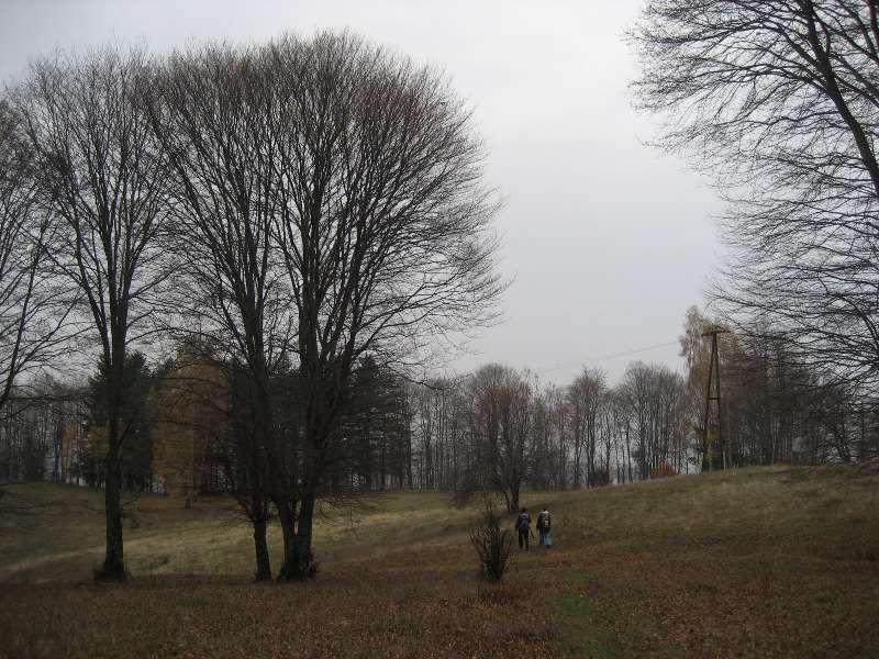 Есен на Китка 15
