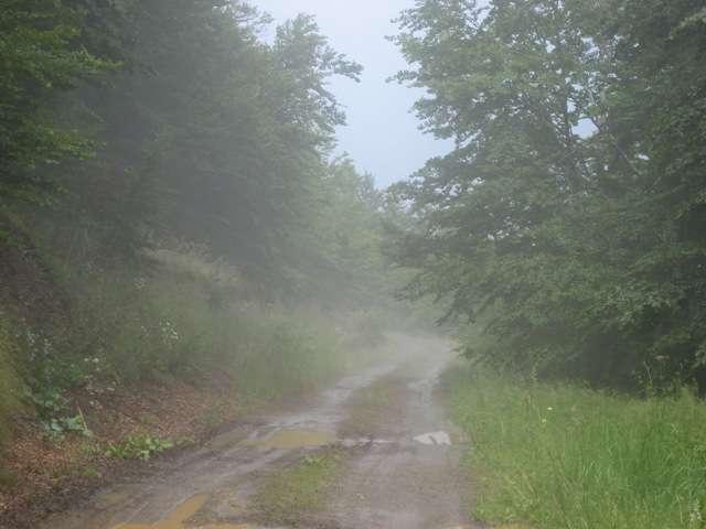 Илинска Планина, Кичево 4 – 05.07.2009 4