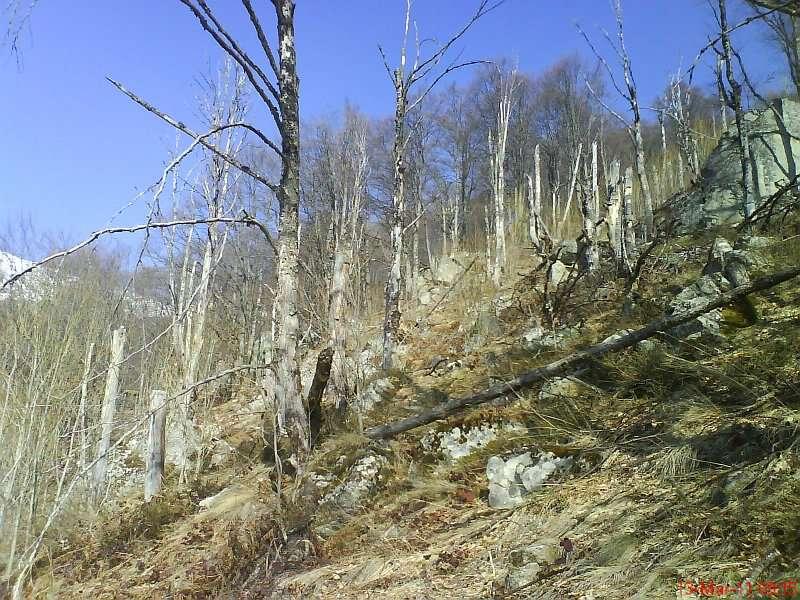 с. Беловиште – Беловишки водопади – Пирибег 13.03.2011 3