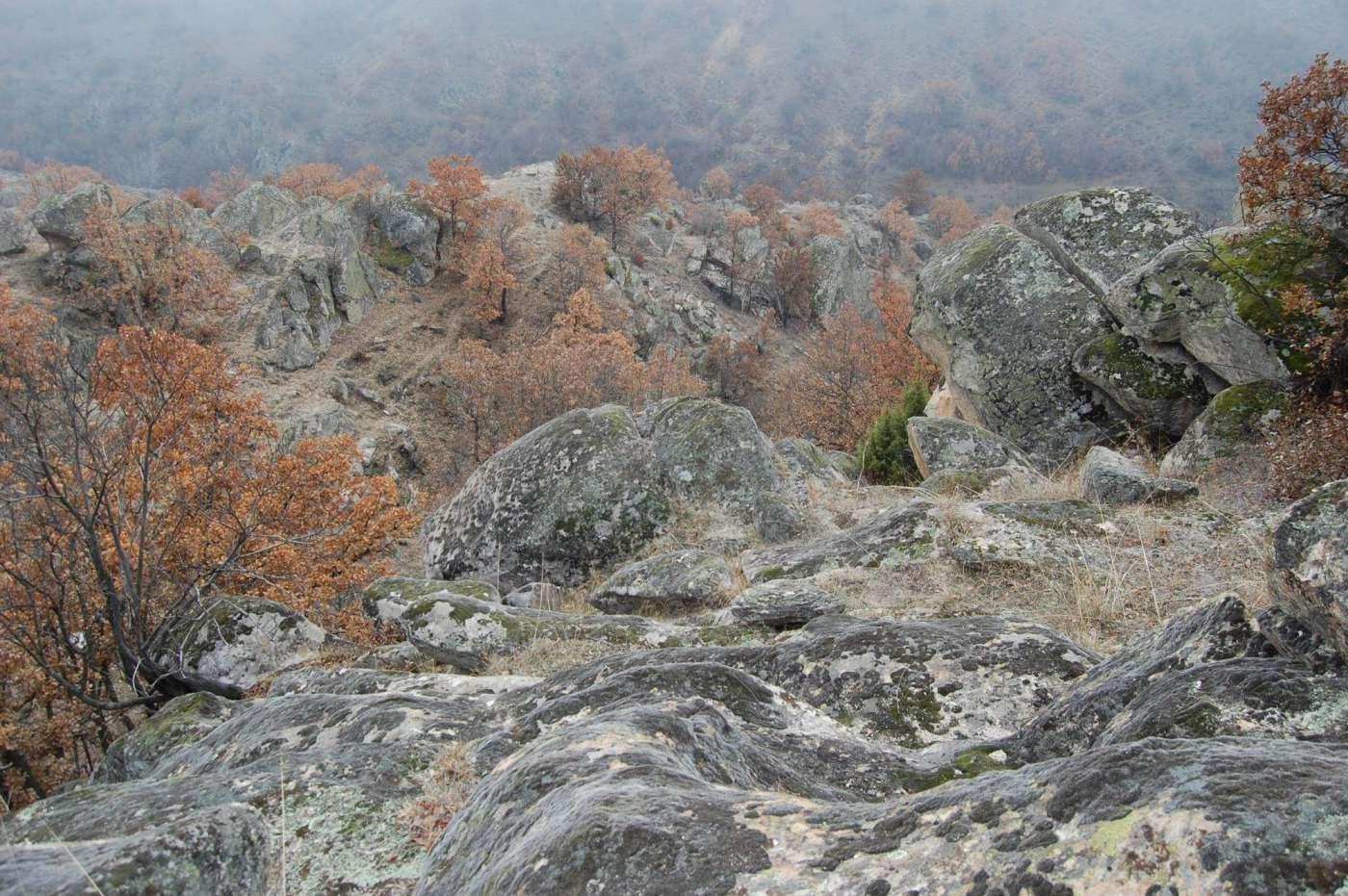 Пред Божикна планинарска прошетка Мариово-Трескавец 3