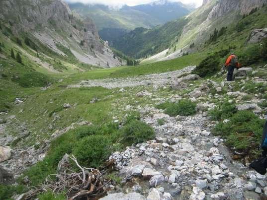 Шара блесна со својата шареноликост, а Лешница вистина е Швајцарија (21.06.2015) 0